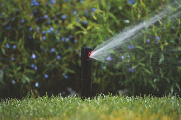 Bewässerungsanlage Planen kleine rasenfläche